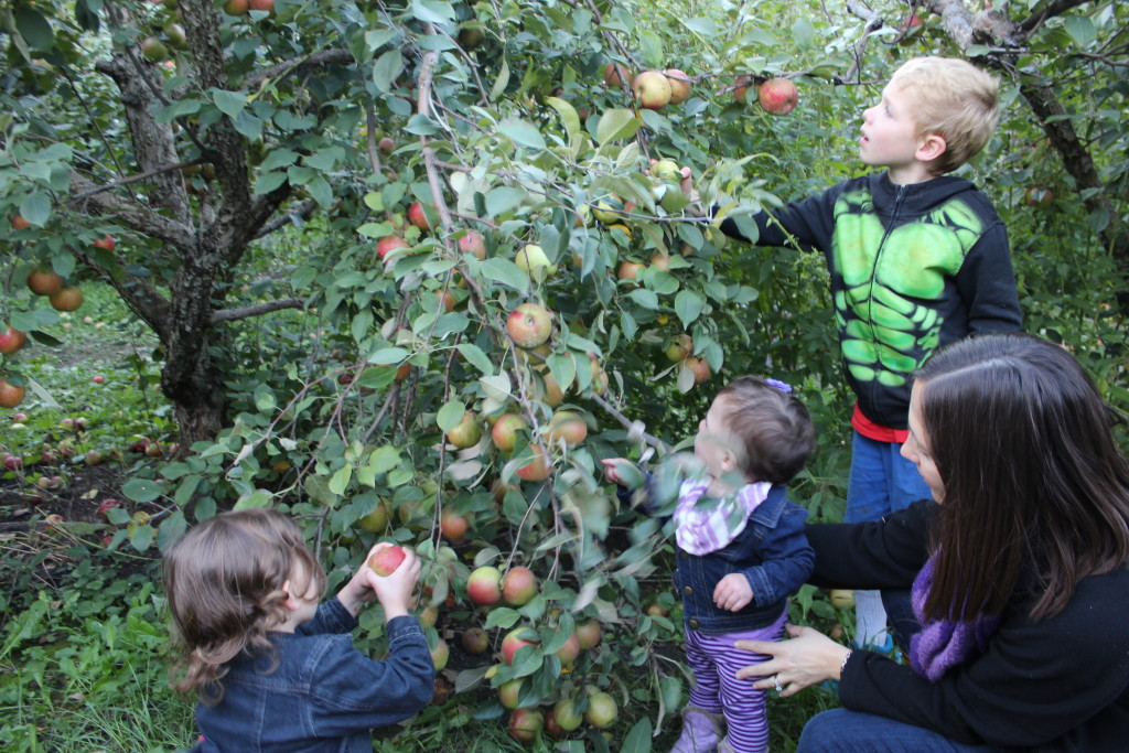 Madiana, Gretchen, Brecken and April picking apples
